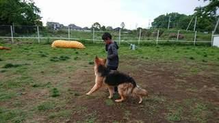 FB_IMG_1527986853665.jpg
